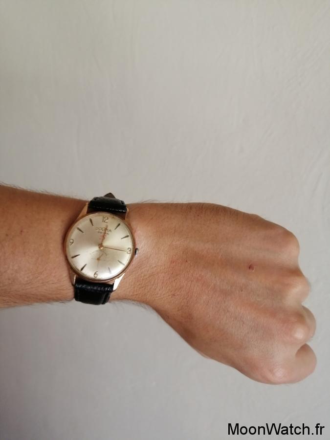 wristshot dogma prima 23