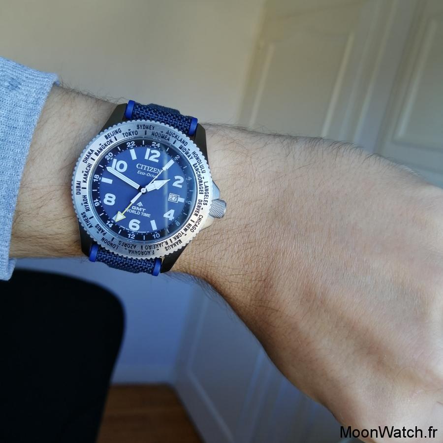 wristshot citizen promaster gmt