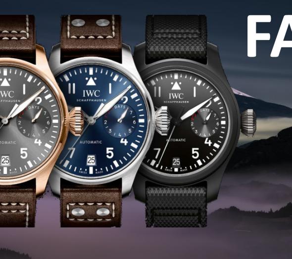 moonwatch faq